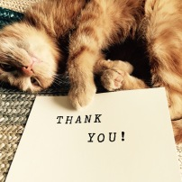 George Says Thank You